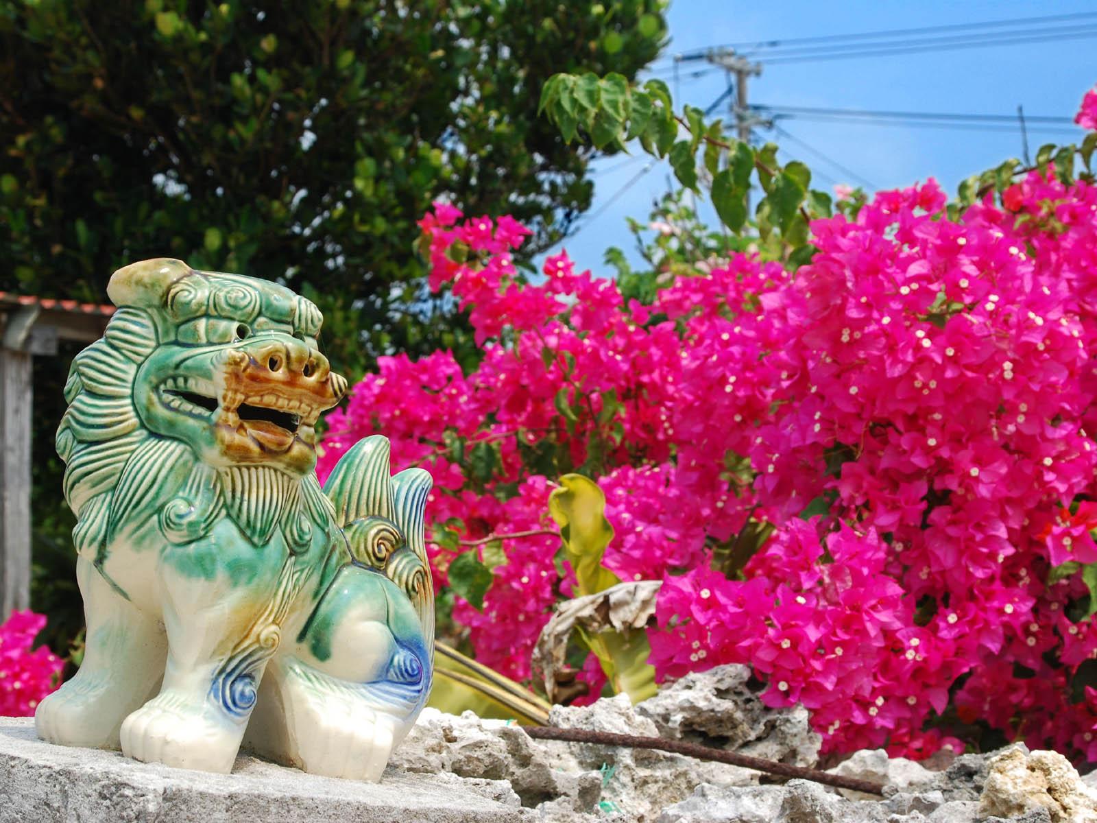 シーサーと花の沖縄の壁紙